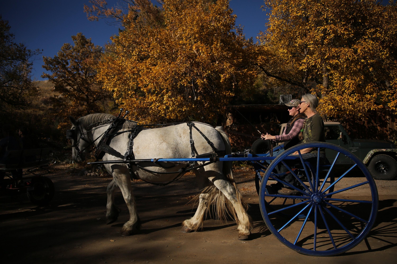 Stockton S Shires Forrest Czarnecki Colorado Springs Co
